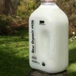 Gallon bottle of raw milk